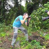 Photographiant des chrysalides d'O. croesus. Pulau Bacan (Moluques, Indonésie), 10 septembre 2013. Photo : Eko Harwanto