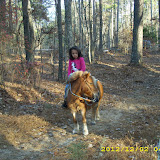 Horse Trails - DSCI0468.JPG