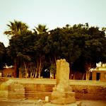 Egypt Edits (295 of 606).jpg