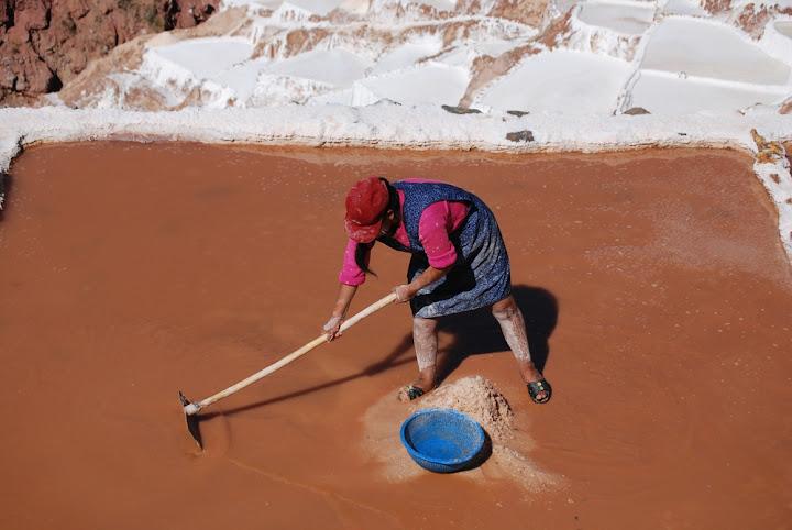 harvest of salt in the salines of Maras