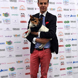 OIC - ENTSIMAGES.COM - Nick Henderson at the  PupAid Puppy Farm Awareness Day 2015 London 5th September 2015 Photo Mobis Photos/OIC 0203 174 1069