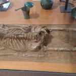 il-museo-nazionale-etrusco-pompeo-aria-corredo-funebre-etruschi.jpg