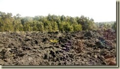 IMG_20170114_lava-field-Volcanoes-Na[1]