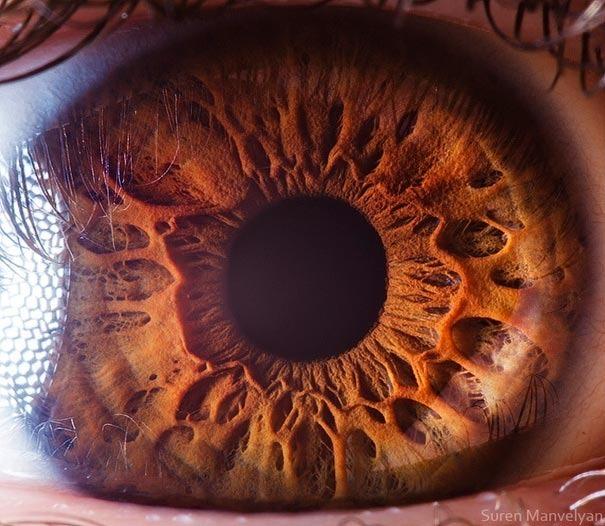 human eyes 1 (3)