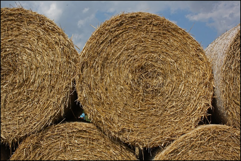 Bales of hay at Castle Farm Lavender - The Hop Shop