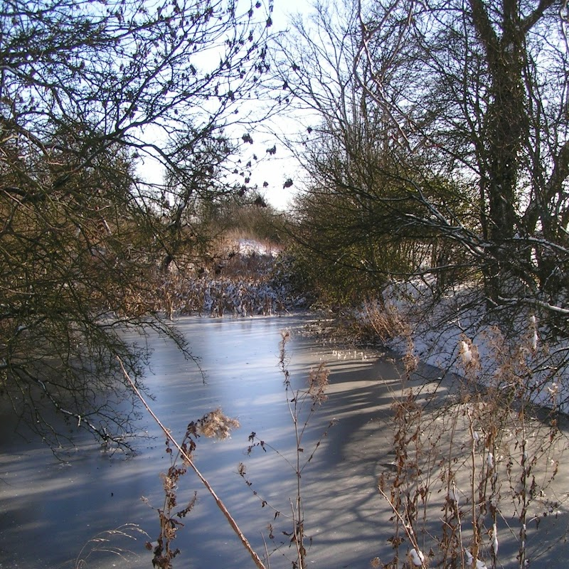 Tattenhoe_10 Frozen Pond.jpg