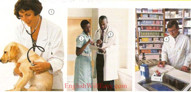 Jobs - work/ occupations - Picture Dictionary