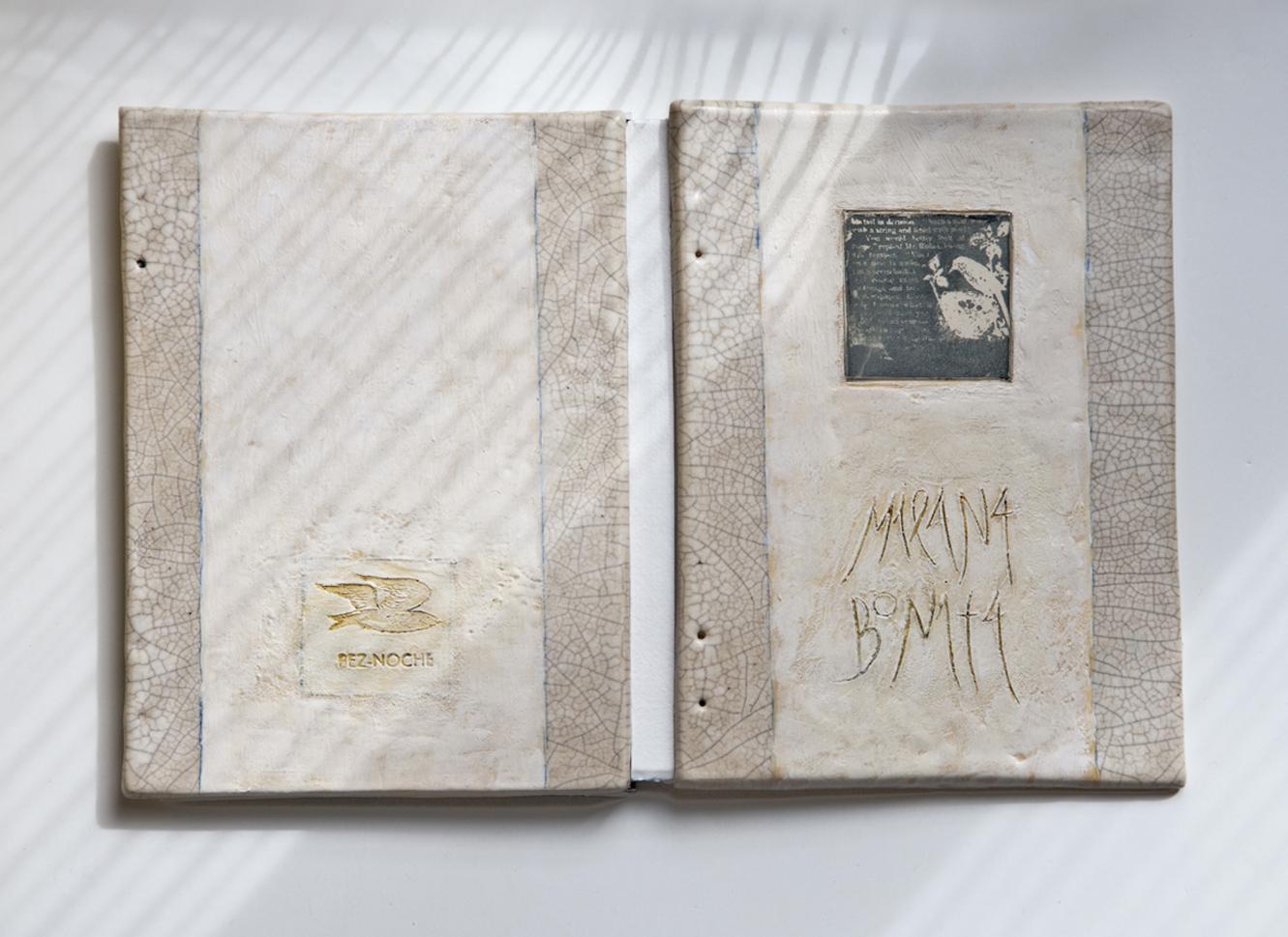 Un mundo mirado el libro fotograf a serigraf a cer mica for Libro in ceramica