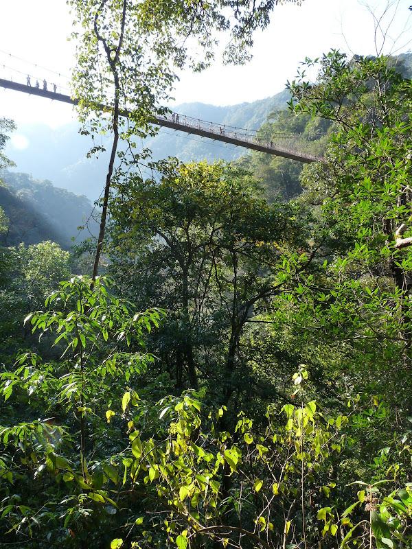 Chine .Fujian.Wuhi shan B - P1030232.JPG