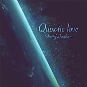 Quixotic Love
