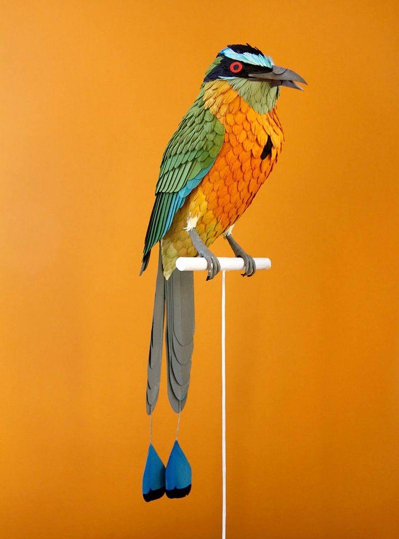 diana-beltran-herrera-birds-17