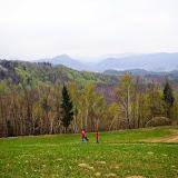 Osovnik - Vika-00704.jpg