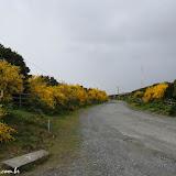 Parque Tantauco -  Chiloe, Chile