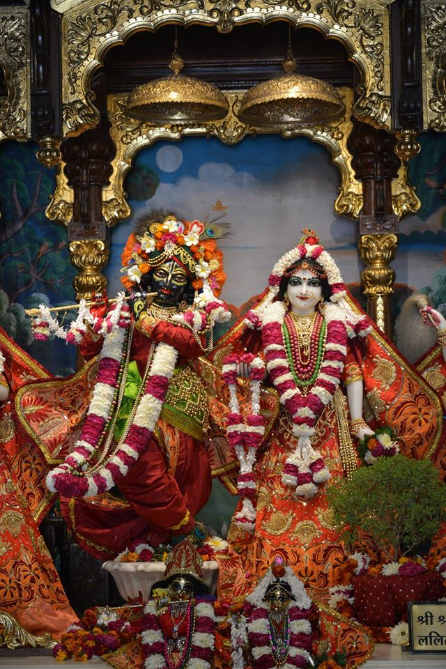 ISKCON Ujjain Deity Darshan 10 Jan 2017 (6)