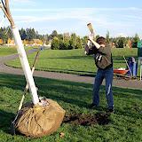 Tree Planting November 2010 - DSC_4530.JPG