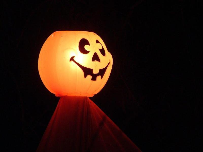 Lamp From Pumpkin, Halloween