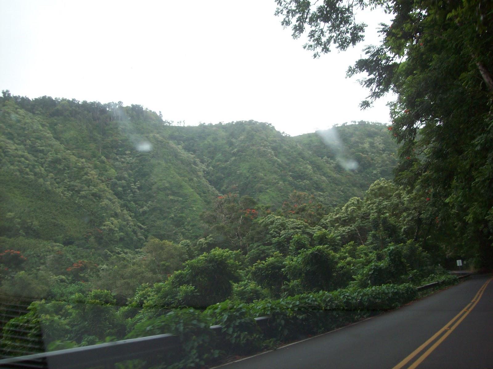 Hawaii Day 5 - 114_1458.JPG
