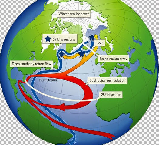 Connaitre la mer et les navires - chroniques et actu Fiche%2525201-302