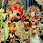 Anusha sri avatar image