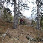 Vinschgau Trails jagdhof.com (20).JPG