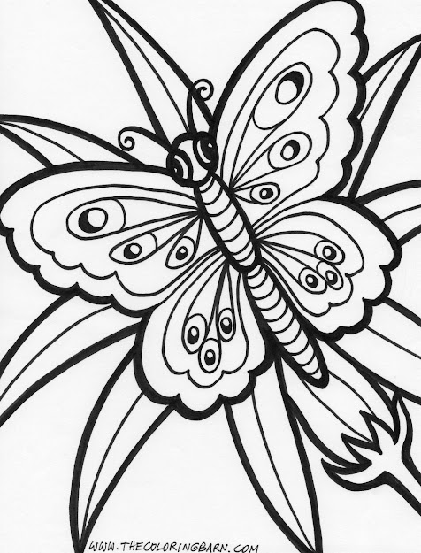 Butterfly Flower Coloring Pages Coloring Pictures Of Flowers And