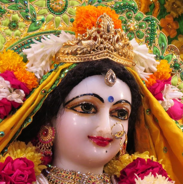 ISKCON Vallabh vidhyanagar Deity Darshan 11 jan 2017 (12)