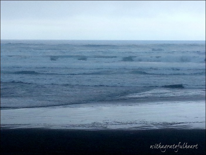 Tillicum Beach - Gray Day