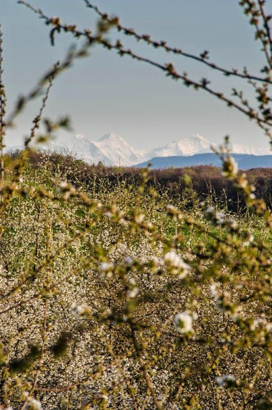 Alpensicht mit Eiger, Mönch und Jungfrau