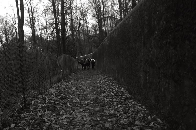 Route Invernale - Clan Jonathan - Monte Mesma, 3-5.1.14 - IMGP0928.JPG