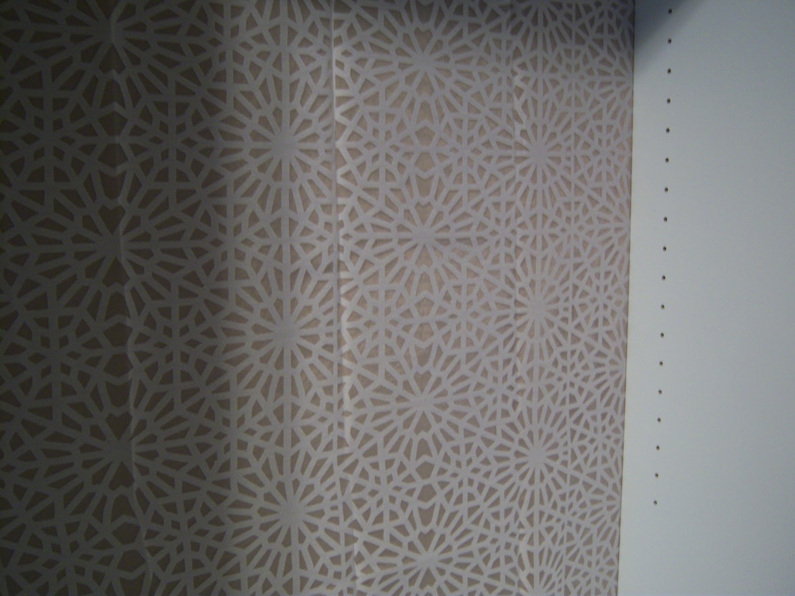 The Stirring Place: Shower Curtain + Bookcase = ??