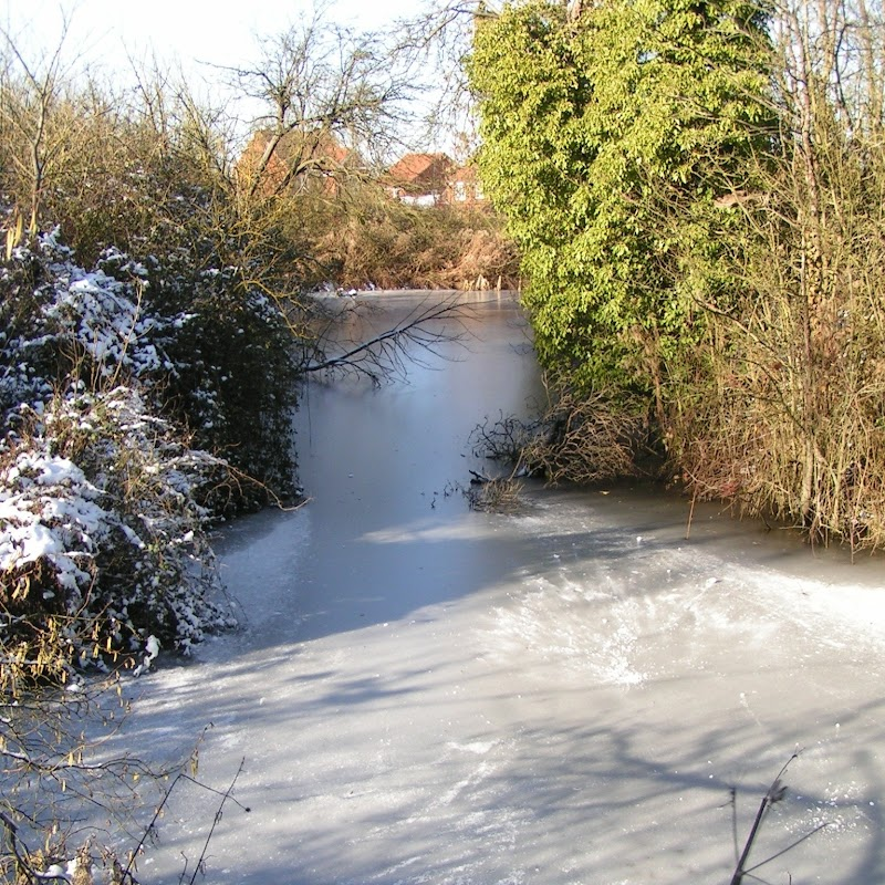 Tattenhoe_09 Frozen Pond.jpg