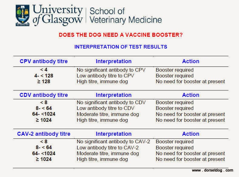 How to interpret pre-vaccination antibody test