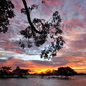 ~sunset~ by Re Rahnavarda - Landscapes Sunsets & Sunrises
