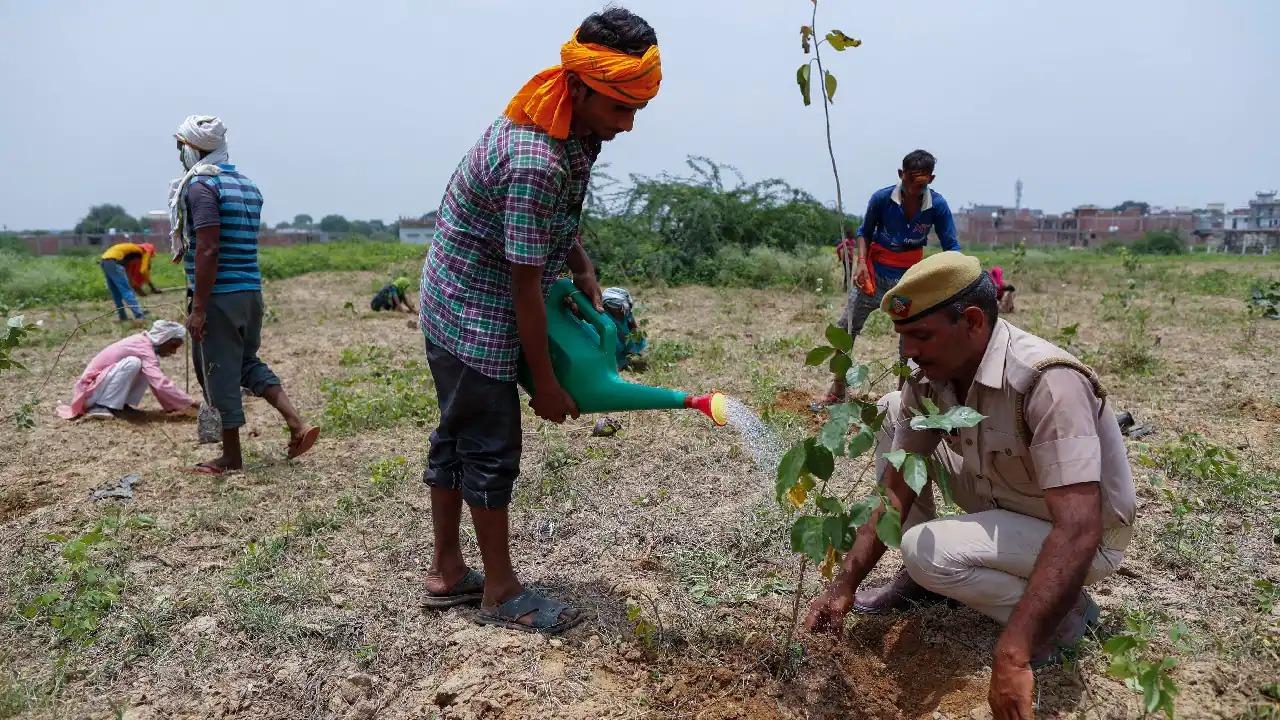 Jhabua News- शस्त्र लायसेंस के लिये 10 पौधों के साथ फोटो लगाकर आवेदन करें