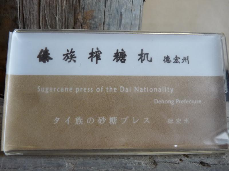CHINE.YUNNAN.KUN MING Temple, jardin horticole,Musée des minorites - P1270439.JPG