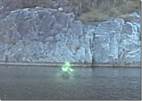 ghostly glowing green figure (1)