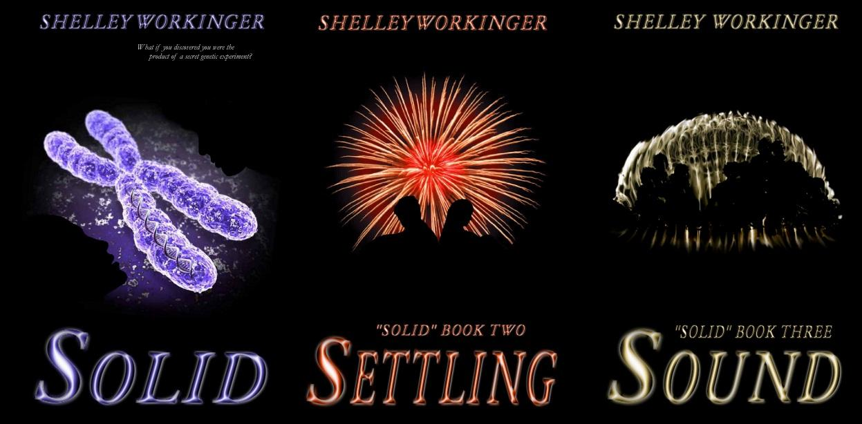 Giveaway: The Solid Series by Shelley Workinger