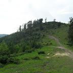 2010  16-18 iulie, Muntele Gaina 049.jpg