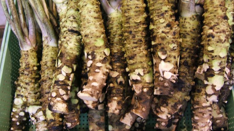 Alishan best wasabi