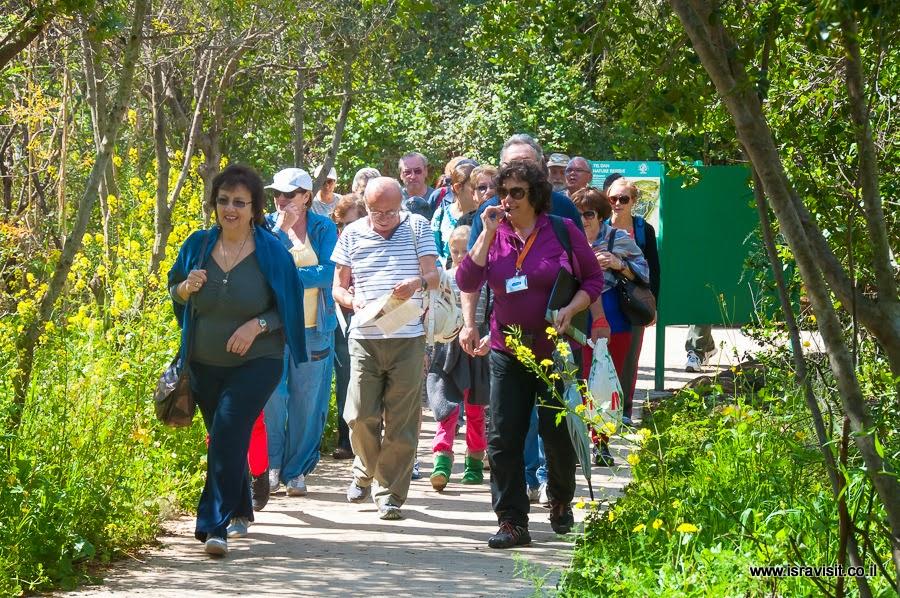 Групповая экскурсия в заповеднике Тель Дан. Гид в Израиле Светлана Фиалкова.