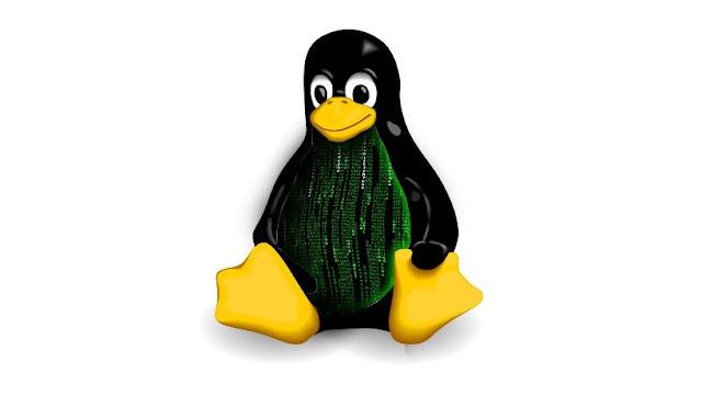 kernel-linux-4.jpg
