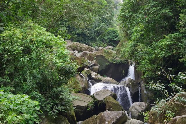 Cascade entre Lita et Chuchuvi (San Lorenzo, Esmeraldas), 24 novembre 2013. Photo : J.-M. Gayman