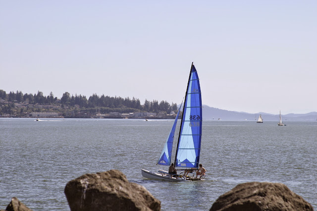 Sailboat in Bellingham Bay. Credit: Peter James