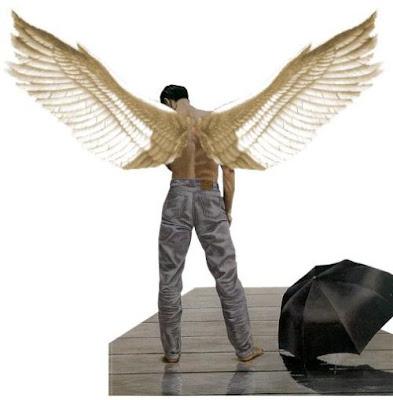 Quero asas