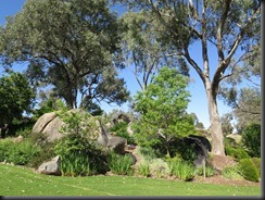 171109 012 Cowra Japanese Gardens
