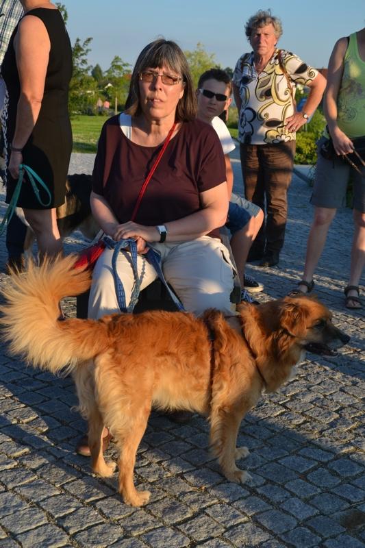 On Tour in Tirschenreuth: 30. Juni 2015 - DSC_0101.JPG