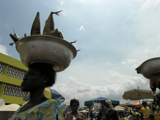 Marketplace in The Gambia. From Crocodile Love: Unusual People Who Made Remarkable Trips
