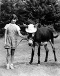 1957 Little Wohelo