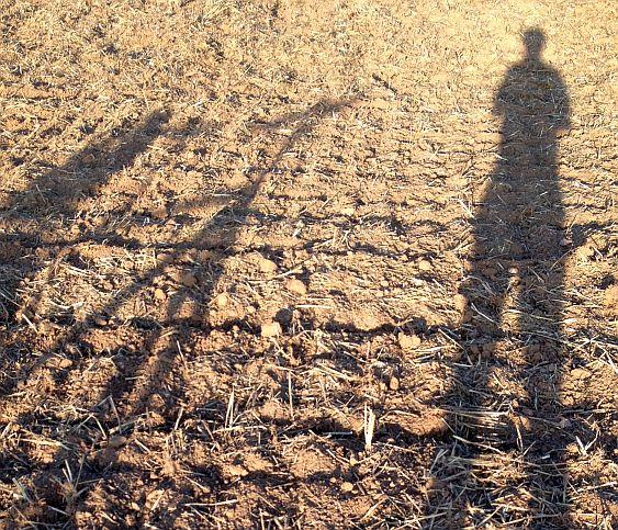 Chris on the Bike: Schatten bei tief stehender Sonne auf abgeerntetem Acker