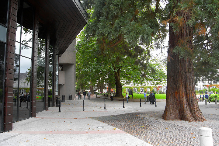 Boole Library exterior